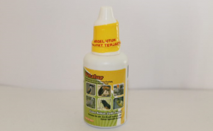 Jenis Vitamin Untuk Murai Batu Paling Recommended